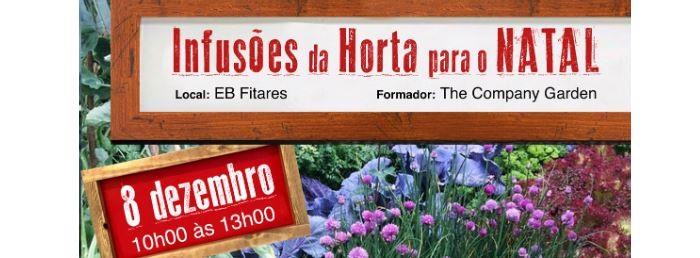 "Workshop ""Infusões da Horta para o Natal"""
