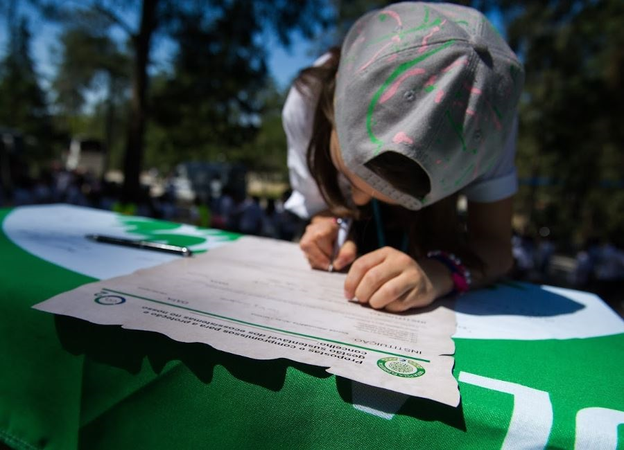 13 escolas viseenses conquistam Bandeira Verde