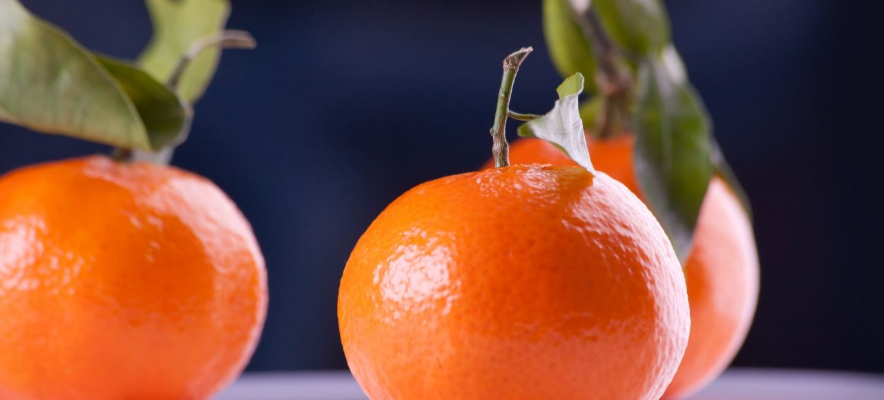 Fruta Escolar
